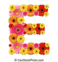 E, flower alphabet isolated on whit