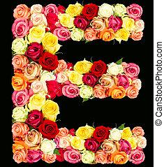 E, roses flower alphabet