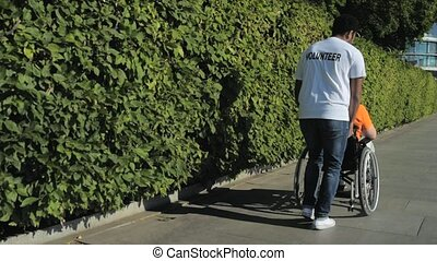 Eager beaver volunteer walking with a wheelchaired man -...