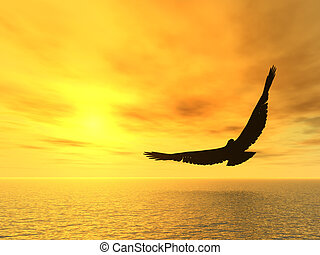 Eagle and a yellow decline. A soaring eagle above ocean