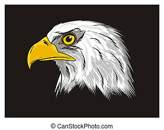 eagle and black background