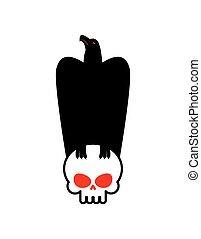 Eagle and skull template for emblem. Hawk logo. Vector illustration
