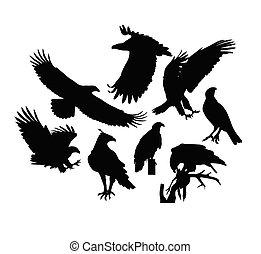 Eagle Bird Silhouettes