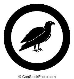 Eagle black icon in circle vector illustration