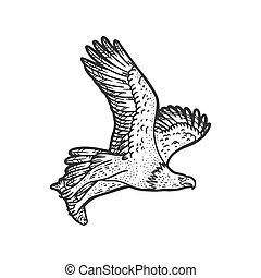 eagle carries the fish sketch engraving vector illustration. T-shirt apparel print design. Scratch board imitation. Black and white hand drawn image.