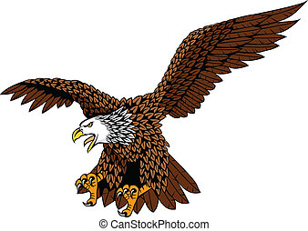 Eagle - Detailed eagle vector