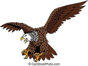 Eagle - Detailed eagle vector