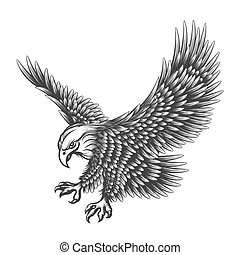 Flying Eagle emblem drawn in engraving style isolated on white. American symbol of freedom. Retro color logo of falcon.