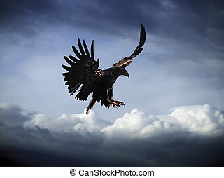 Eagle flying at the blue sky