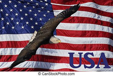 Eagle flying over USA flag