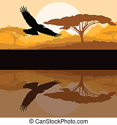Eagle flying vector background with reflection