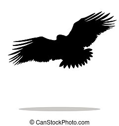 Eagle hawk golden eagle bird black silhouette animal. Vector...