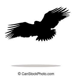Eagle hawk golden eagle bird black silhouette animal. Vector...