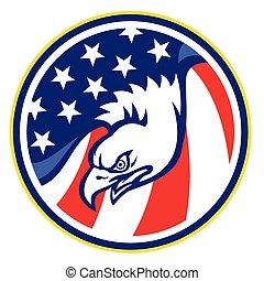 eagle-head-american-flag