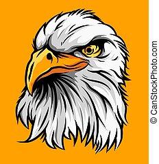 Eagle Head Illustration Vector