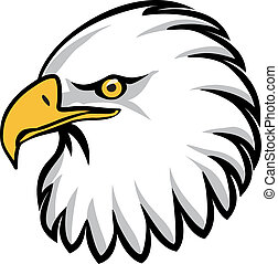 eagle head stock illustrations 4 073 eagle head clip art images and rh canstockphoto com clip art eagle clip art eagle feather