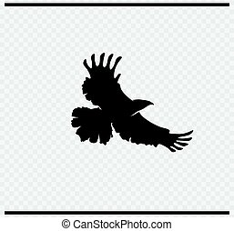 eagle icon black color on transparent background