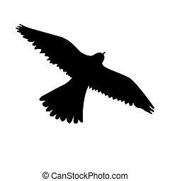 Eagle icon black color