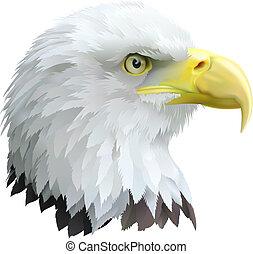 Eagle - Illustration of a eagles head in profile.