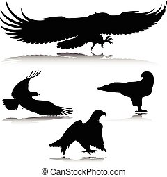 eagle in action vector silhouettes