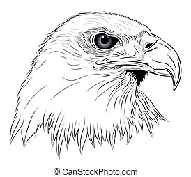 Eagle in the form of a tattoo