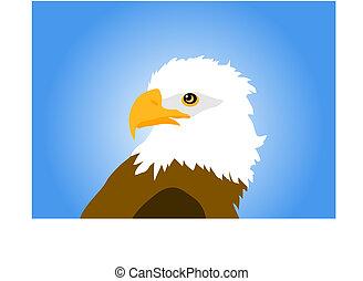 eagle isolated on blue background