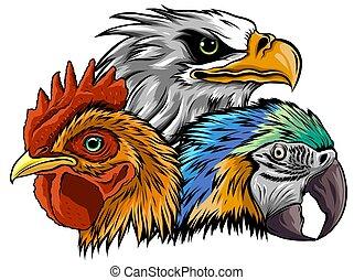 Eagle Mascot Logo Design Vector Template, Modern Illustration for E sports Logo