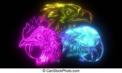 bird digital glow video animation
