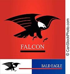 Eagle.Black eagle with the white head.