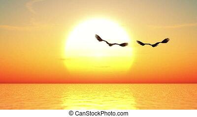eagle and horizon