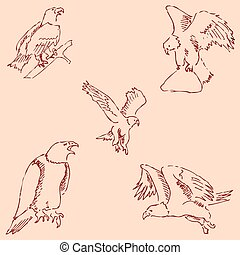 Eagles. Sketch pencil. Drawing by hand. Vintage colors Vector
