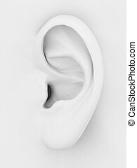ear 3d - 3d model of the ear on a gray background