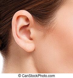 ear closeup - closeup of woman ear