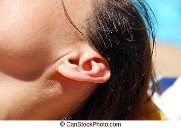 Ear closeup
