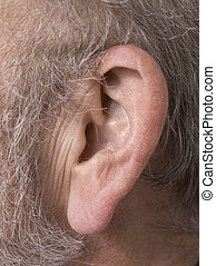ear of an old man