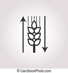 ear of wheat icon on white background