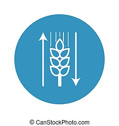 ear of wheat icon on white background