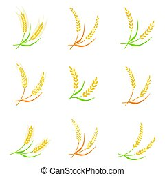 Ear spike logo badge icon wheat isolated vector. Concept for...