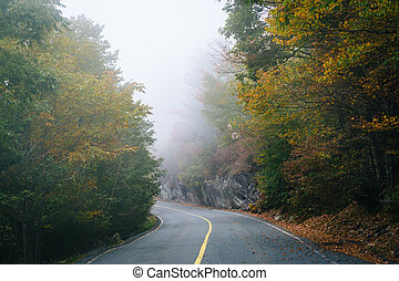 Early autumn color and fog on the road to Grandfather...