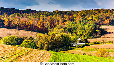 Early autumn color in rural York County, Pennsylvania. -...