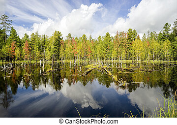Early autumn. Landscape with reflection in the water.