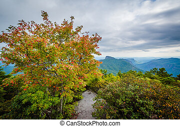 Early autumn view of the Blue Ridge Mountains from Hawksbill...