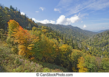 Early fall in Great Smoky Mountains National Park