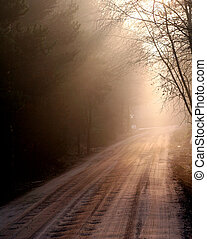Early light on road