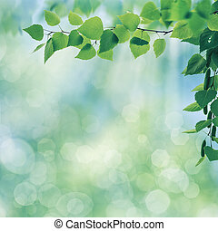 Early morning, abstract summer landscape with green foliage