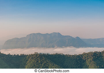 Early morning fog and cloud mountain valley landscape