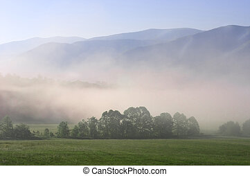 Cades Cove - Early morning fog settling into the valley of...