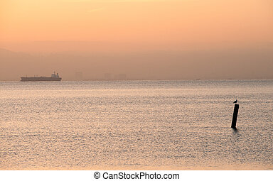 Early morning in Sausalito, CA - Tanker cruising in San...