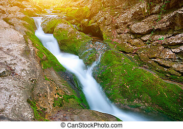 Early morning in the mountains. The picturesque mountain forest stream flowing between the rocks