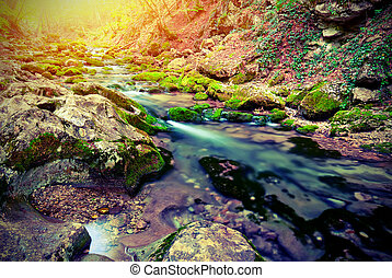 The picturesque mountain forest stream. Vintage style